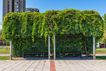 Novi Sad, Serbia - September 18, 2018: Park at the Belgrade Quay with place for free wi-fi in Novi Sad. The bench is covered with leaves