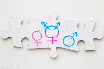 gender symbols on a puzzle close up