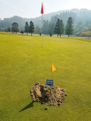 Gopher or Mole trap on golf green