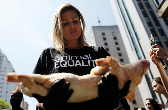 An animal rights activist from Animal Equality holds a dead pig during a gathering to protest the treatment of animals at Paulista avenue in Sao Paulo