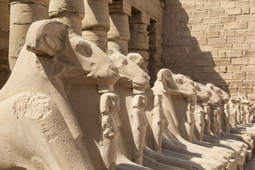 Ram statues on the main square in the open air museum of the Karnak Temple Complex in Luxor, Egypt
