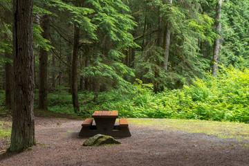 Campsite picnic table in Kleanza Creek Provincial Park, British Columbia, Canada Wall mural