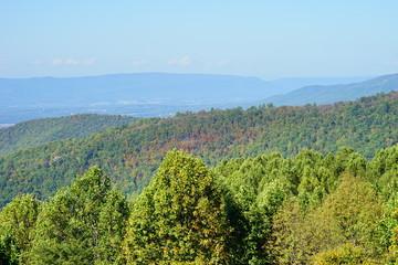 Fall of Shenandoah National Park