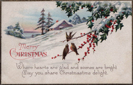 Christmas holiday vintage card birds on bayberry branch