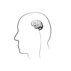 Small, tiny brain. Black lines, white background. Vector illustration.