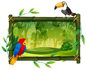 Birds on jungle picture frame