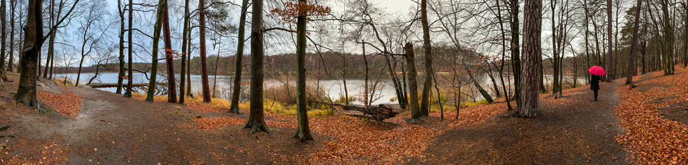 a lonely woman is standing by a lake in bad weather with an umbrella