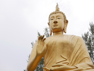 Huge beautiful golden Buddha image / statue