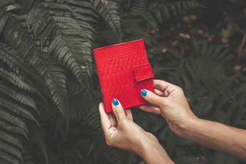 Woman hands holding luxury snakeskin python wallet purse.