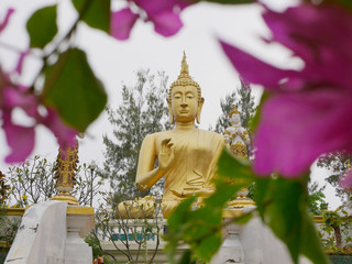 Selective focus of big golden Buddha statue with blurry foreground of pink Bougainvillea flowers