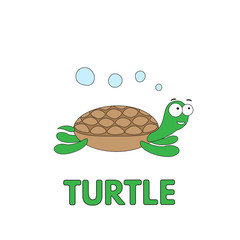 Cartoon Turtle Flashcard for Children