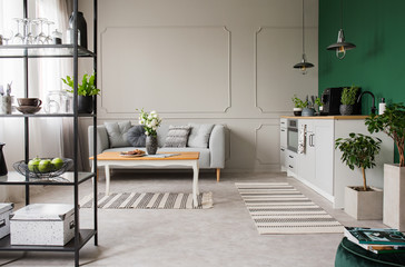 Grey and green open plan kitchen and living room, real photo with copy space on empty wall