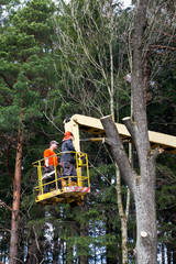 Two workers with a chainsaw trimming the tree branches on the high Hydraulic mobile platform.