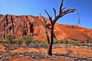A picturesque rock formation in the red center of Australia