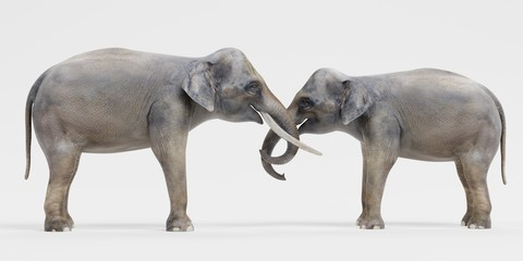 Realistic 3D Render of Asian Elephants