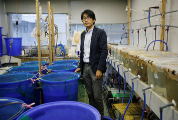 Hiroshi Takahashi, an associate professor at the National Fisheries University, poses for a photograph at his laboratory in Shimonoseki