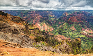 Waimea Canyon Lookout on Kauai, Hawaii