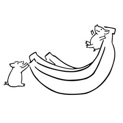 two vector funny cartoon pigs and banana