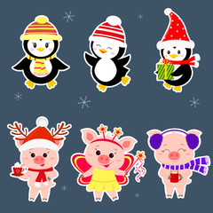 New Year and Christmas card. A set sticker of three piglets and three penguins is typical in different hats and poses in winter. Gift box, fairy butterfly, hot drink. Cartoon style, vector