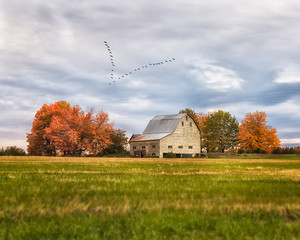 Fall in the County