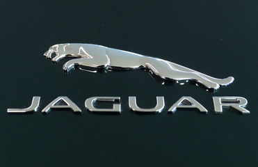 A Jaguar logo is seen on a 2019 Jaguar F-Type sports car at a Jaguar dealership in Manhattan in New York