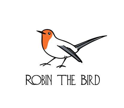 Hand drawn robin