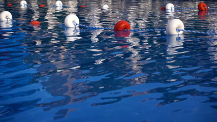 The surface of the blue water in the pool. Olympic pool close-up.
