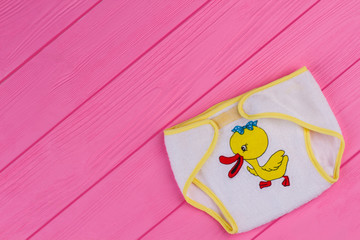 Cartoon duck image on baby underpants and copyspace.