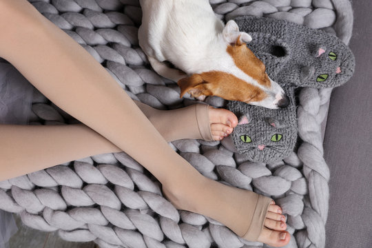 Cozy day at home, dog sleeping on female feet., cold weather, warm blanket. Dog Relax, carefree, comfort lifestyle.