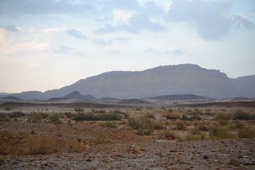 Rain in Mitzpe Ramon, ramon crater in Negev desert, South Israel, floods of water in the desert