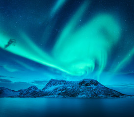 Aurora borealis above the snow covered mountain in Lofoten islands, Norway. Northern lights in winter. Night landscape with green polar lights, snowy rocks, blue sea. Beautiful starry sky with aurora