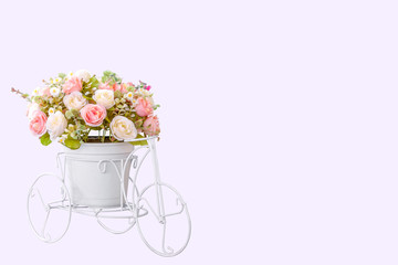 Flower on modern pot on white bike design isolated on laver background, clipping path.
