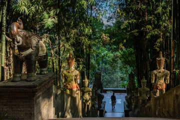 Buddhist statues and staircase in the jungle