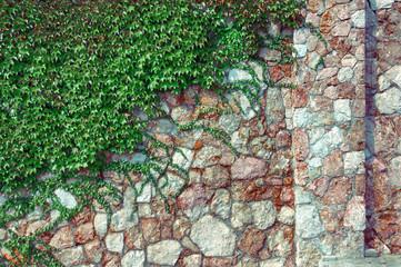 Изгородь из зеленых насаждений, камня и вьющихся растений