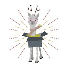 Ein Lama aus der Box
