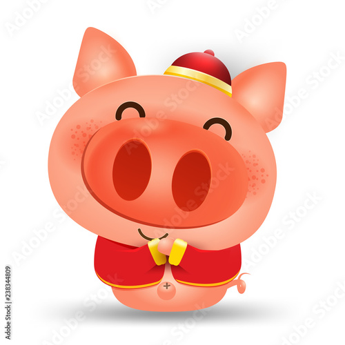 Happy Chinese New Year 2019,pig vector cartoon isolated elements for