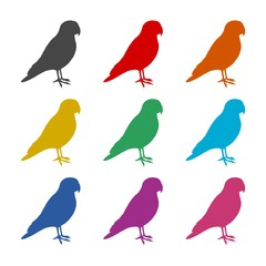 Parrot icon or logo, color set