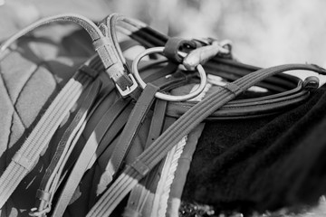 Horse equipment hanging on the  horse