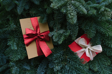 Christmas presents lying on conifer branches