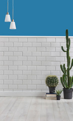 wall background white ceramic and blue wall, vase of cactus and white lamp decoration.