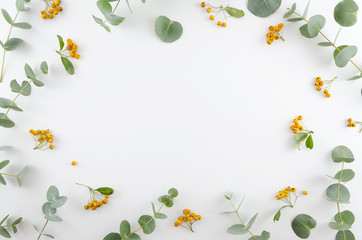 Spring flowers composition. Rectangular frame made of yellow rowan berries and gree eucalyptus branches on white background. Flat lay, top view, copy space. Wall mural