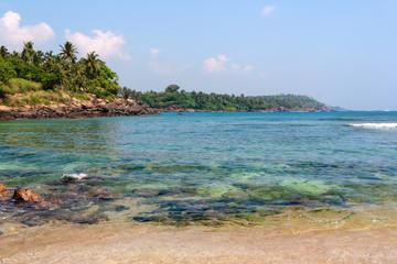 Beautiful tropical landscape.