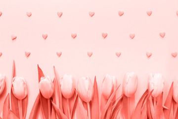 Pink tulips with pink heart sprinkles on the pink background. Flat lay, top view.  Valentines background. . Living coral theme - color of the year 2019