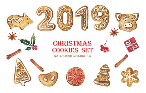 A large watercolor set of Christmas gingerbread with a symbol of 2019. Gingerbread cookies are in the shape of Christmas trees, pigs, stars, oranges on a white background.