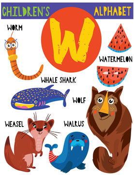 Letter W.Cute children's alphabet with adorable animals and other things.Poster for kids learning English vocabulary.Cartoon vector illustration.