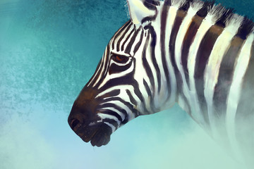 Artistic portrait of a zebra. Digital painting
