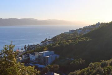 Stunning View over Wellington Bay, New Zealand