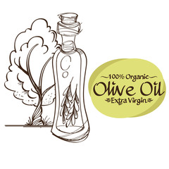 Olive branches and bottles with oil contour drawings for decoration of products.