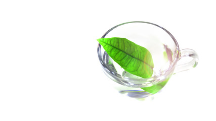glass cup with water and a leaf of lemongrass. White background. concept of clean water and food.