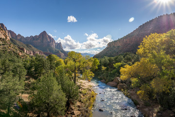 Autumn at Zion National Park and the trees beginning to change colour